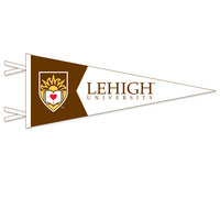 Lehigh Multi Color Logo Pennant from Collegiate Pacific
