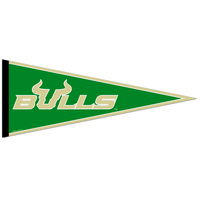 South Florida Bulls Pennant from Wincraft