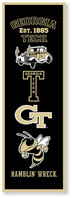 Georgia Tech Collegiate Pacific Banner