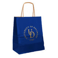 Delaware Blue Hens Small Gift Bag