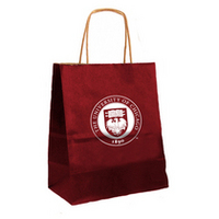 University of Chicago Small Gift Bag
