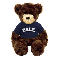 Yale Bulldogs Dexter the Bear