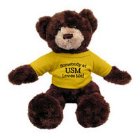Southern Mississippi Eagles Dexter the Bear