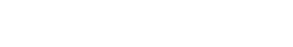SVSU True Spirit Shop Logo