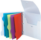 Frosted Poly Binder Organizer