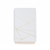 Denik Geo White Notebook
