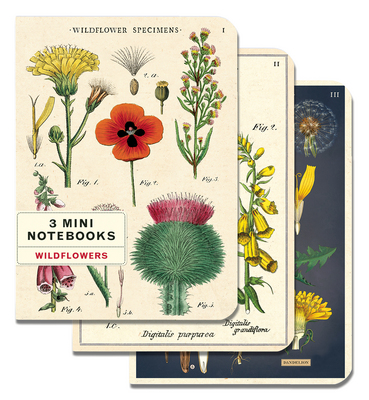 3 Mini Notebooks  Wildflowers