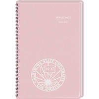 DayMinder Academic Weekly Planner 13 Months August Start 4 78 x 8