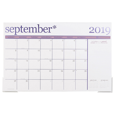 Erin Condren Metallic Deskpad, 20192020 Academic Year  17 x 22