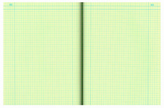 Lab Notebook 4X4 Quad Ruled Green Paper 12X9 Numbered Pages 1152 Side Tape Bound Red Cover