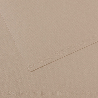 Canson MiTeintes Paper Sheet, 19 x 25, Flannel Gray