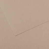MiTeintes Paper Sheets 19 x 25 Flannel Gray