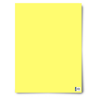 Royal Consumer Product 22 x 28 Poster Board  Blue, 25 Count