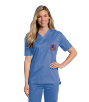 LANDAU  ALL DAY UNISEX V NECK SCRUB TOP