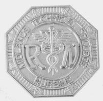 Registered Nurse  Silver Pin