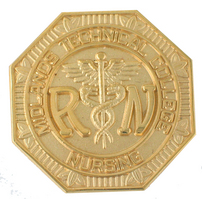 Registered Nurse  Gold Pin