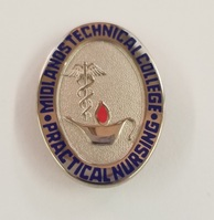 Licensed Practical Nurse  Silver Pin