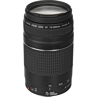 Canon EF 75300mm f45.6 III Telephoto Zoom Lens