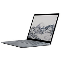 Microsoft Surface 512GB Platinum