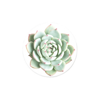 Popsockets 801336 Swappable PopGrip You Succulent