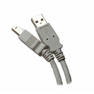 Professional Cable10 Foot USB Type A to USB Type B Compliance Cable