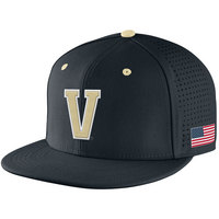 Nike Sized True Vapor Hat