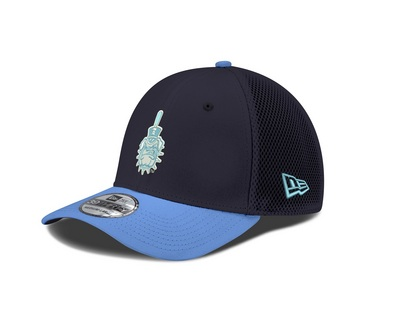 942ef6beeb7 The Citadel Bookstore - New Era 39THIRTY Fitted Hat