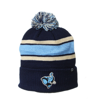 Zephyr Lincoln Knit Hat