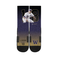 Jake Lamb CoBranded MLB Socks