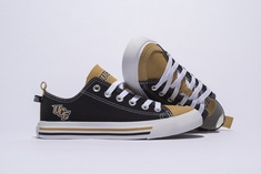 UCF Low Top SKICKS