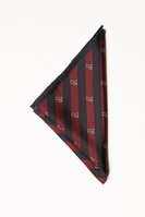 Legacy Pocket Square Scarf