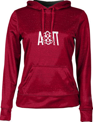Alpha Omicron Pi Womens Pullover Hoodie Heather