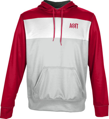 Alpha Omicron Pi Unisex Pullover Hoodie Heather