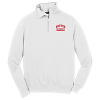 Public Health Quarter Zip Pullover (Online Only)