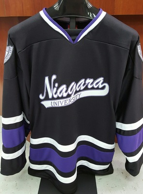 size 40 fcdbe 5d1a5 Adult Hockey Jersey | Official Niagara Purple Eagles Team Store