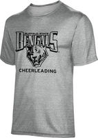 ProSphere Cheerleading Unisex TriBlend Distressed Tee