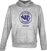 Spectrum Cricket Unisex Distressed Pullover Hoodie