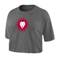 Nike Dri Fit Cotton Crop T Shirt
