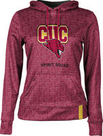 Spirit Squad ProSphere Womens Sublimated Hoodie (Online Only)