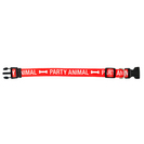Party Animal Dog Collar LXL