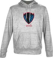 Soccer Spectrum Youth Pullover Hoodie (Online Only)