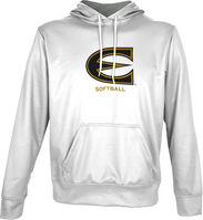 Spectrum Softball Youth Unisex Distressed Pullover Hoodie