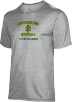 Cheerleading Spectrum Youth Short Sleeve Tee (Online Only)
