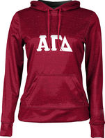 Alpha Gamma Delta Womens Pullover Hoodie Heather