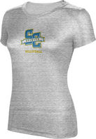 ProSphere Volleyball Womens TriBlend Distressed Tee