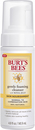 Burts Bees Skin Nourishment Foaming Clean