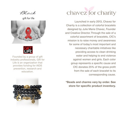 Chavez for Charity  Little Kids Rock
