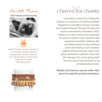 Chavez for Charity Best Friends Animal Society