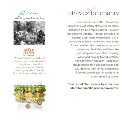 Chavez for Charity  Whole Planet Foundation