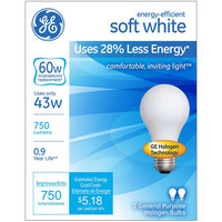 60 Soft White Halogen Light Bulb 2PK